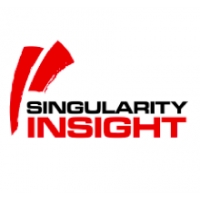Logo de la structure Singularity Insight