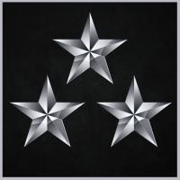 Logo de la structure Silverstars