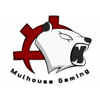 Logo de la structure Mulhouse Gaming