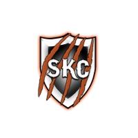 Logo de la structure Skycoca Multigaming