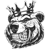 Logo de la structure Team Grizzli