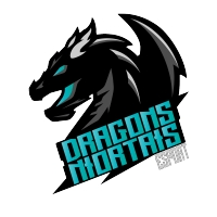Les Dragons Niortais - eSport