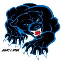 Logo de la structure Dawns Esport