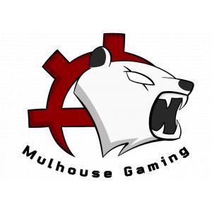 Logo de la structure Mulhouse Gaming