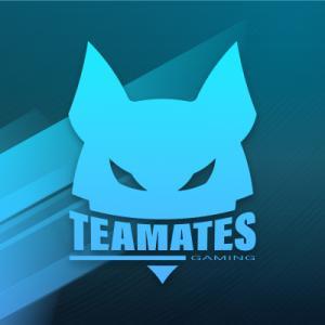 Logo de la structure Teamates Gaming Esport Club
