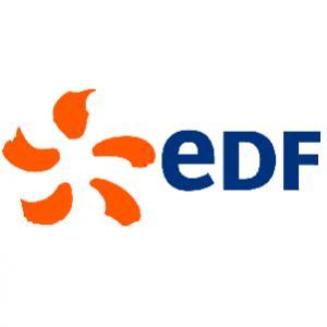 Logo de la structure EDF