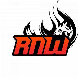 Logo de la structure Rush n wipe