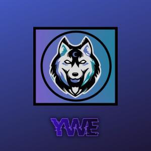 Logo de la structure Young World Esport