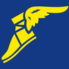 Logo de la structure Goodyear