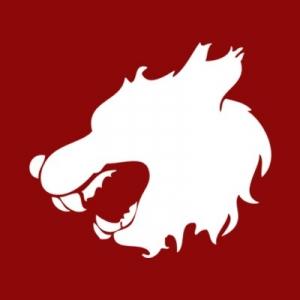 Logo de la structure Dream Evolution