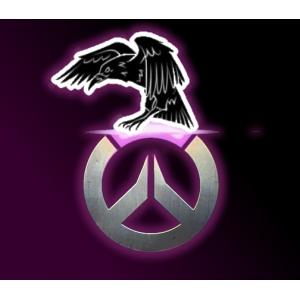 Logo de la structure Roxo Raven