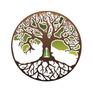 Logo de la structure Origins Productions