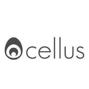 Logo de la structure ocellus studio