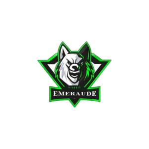 Logo de la structure Emeraude Esport