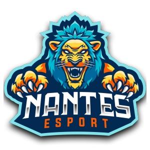 Logo de la structure NANTES ESPORT