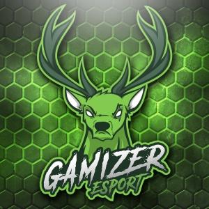 Logo de la structure Gamizer