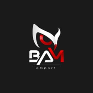 Logo de la structure BAM eSport