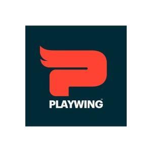 Logo de la structure Playwing Ltd