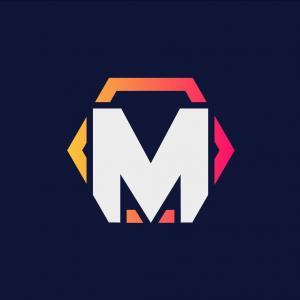 Logo de la structure Team Metaleak