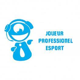 Fiche métier – Joueur Professionel Esport : le métier, les formations, les compétences