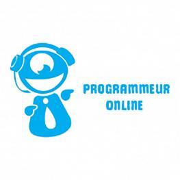Fiche métier : Programmeur online, par Gaming Campus