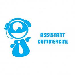 Fiche métier : Assistant commercial, par Gaming Campus